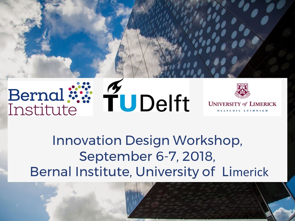 Delft University of Technology and Bernal Institute